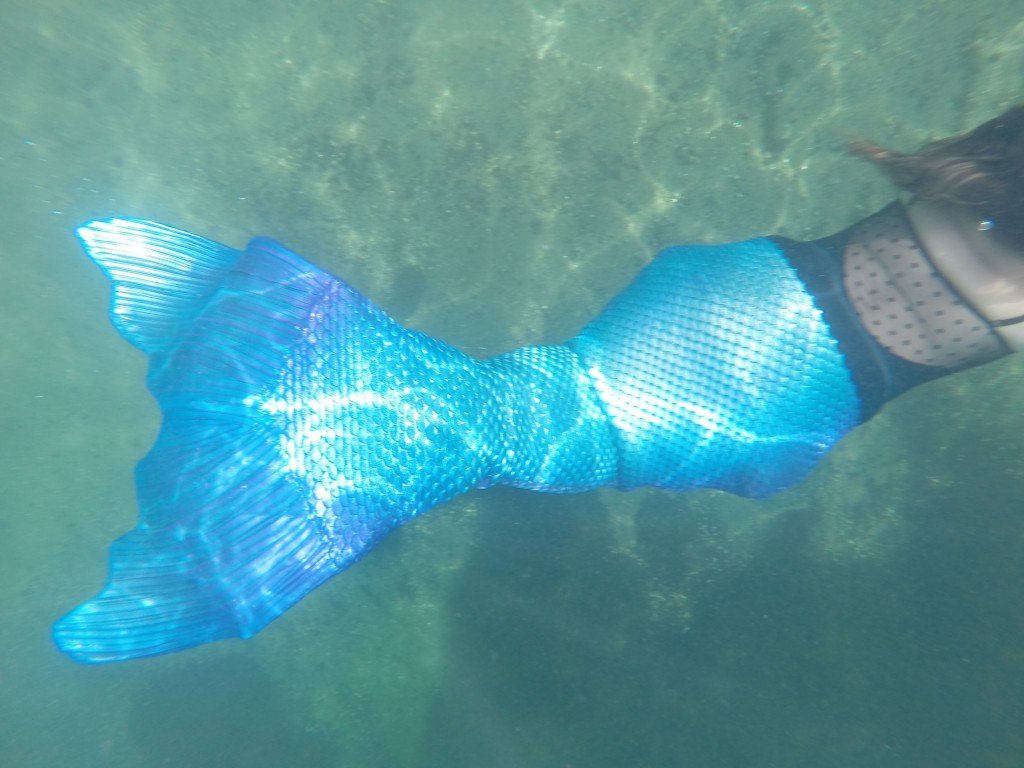 mermaid tail close up